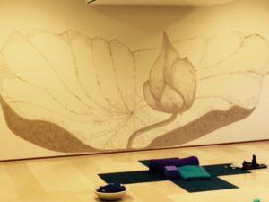 Yogastudio Corazon yinyoga